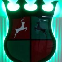 litery i logo podswietlane