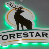 Logo z kolorowej plexi, na płycie pcw, podświetlane diodami LED w kolorze zielonym
