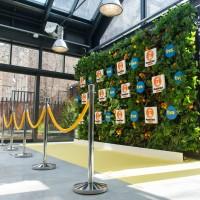 #event #dekoracja #ścianka #logo